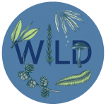 round blue icon with the word wild in center and various leaves, pine branch, and mushroom